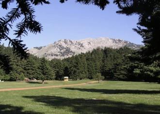 """Άποψη του οροπεδίου της Αρβανίτσας. Πανέμορφο τοπίο στο """"βουνό των Μουσών"""" όπως είναι γνωστός ο Ελικώνας από τα αρχαία χρόνια"""